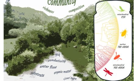 SCREENING FRESHWATER MACROINVERTEBRATE COMMUNITIES USING A MULTI-MARKER METABARCODING APPROACH