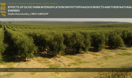 EFFECTS OF OLIVE FARM INTENSIFICATION ON PHYTOPHAGOUS INSECTS AND THEIR NATURAL ENEMIES