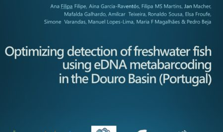 OPTIMIZING FRESHWATER FISH DETECTION WITH eDNA METABARCODING