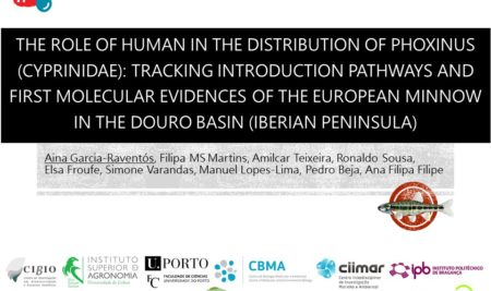 THE ROLE OF HUMAN IN THE DISTRIBUTION OF PHOXINUS (CYPRINIDAE): TRACKING INTRODUCTION PATHWAYS AND FIRST MOLECULAR EVIDENCES OF THE EUROPEAN MINNOW IN THE DOURO BASIN (IBERIAN PENINSULA)